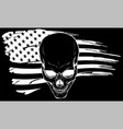 skull with american flag vector image vector image