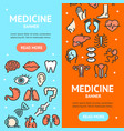 human organs signs banner vecrtical set vector image vector image