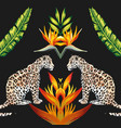 mirror tigress tropical flowers and leaves black vector image vector image