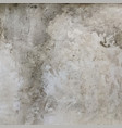 old plain grungy concrete wall texture vector image