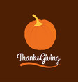 thanksgiving day poster beautiful pumpkins in vector image