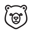 bear icon vector image