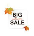big autumn sale design vector image vector image
