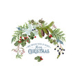 branch christmas composition vector image