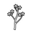cartoon tree berries on branch natural vector image vector image