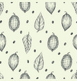 cocoa beans seamless pattern engraved vector image