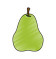 fresh pear fruit icon vector image
