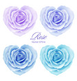 roses flowers in heart shape vector image vector image