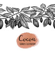 seamless of cocoa vector image vector image