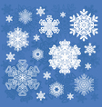set snowflakes isolated objects vector image vector image