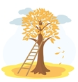 Autumn tree with yellowed leaves and stairs vector image