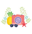 camera photographic with summer sunglasses vector image