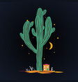 cute cartoon with high saguaro cactus and liitle vector image vector image