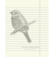 Hand drawing sketch bird vector image vector image