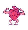 healthy heart flexing muscle drawing vector image