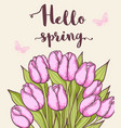 pink blooming tulips vector image