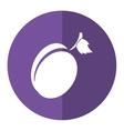 plum organic fruit purple circle shadow vector image