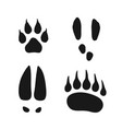 wild animals footprints set vector image vector image