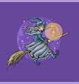 beautiful witch riding flying broom vector image