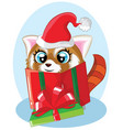 cute cartoon christmas raccoon with gift in a vector image vector image