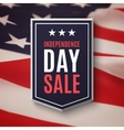 Independence day 4th of July sale background vector image vector image