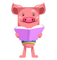 pig reading book on white background vector image