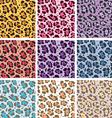 Skin textures of leopard