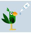 treat parrot vector image