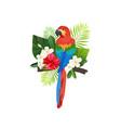 tropical bird composition vector image