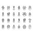 cactus plant simple black line icons set vector image