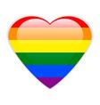 Gay flag button vector image