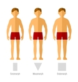 Men Body Types vector image vector image