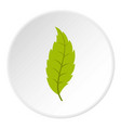 narrow toothed green leaf icon circle vector image vector image