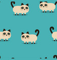 pattern with grumpy cat vector image