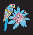 pattern with parrot and flower plumeria embroidery vector image vector image