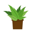 plant pot decoration office nature vector image