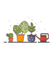 potted plants with watering can on gray background vector image