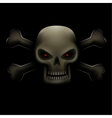 skull with bones in dark vector image vector image