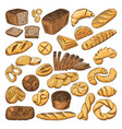 colored hand drawn pictures of fresh bread and vector image