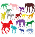 colorful set of silhouettes of foals vector image vector image