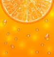 Orange Background with Slice and Drops vector image