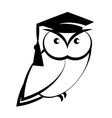 Owl with college hat vector image vector image
