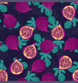 pattern with figs and leaves vector image vector image