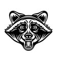 raccoon head in black style vector image