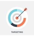 Targeting vector image