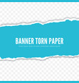 torn paper piece realistic banner vector image