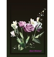 roses Greeting card vector image