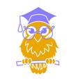 icon back to school owl vector image