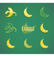 banana sign vector image vector image
