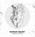 hand drawing realistic polygonal human heart vector image